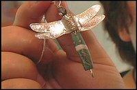 Hgtvdragonfly